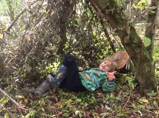 child lying on woodland floor in den