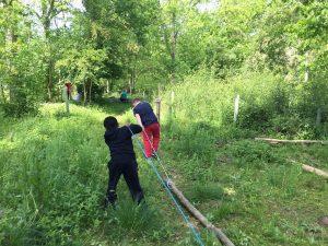 two boys dragging logs through woodland