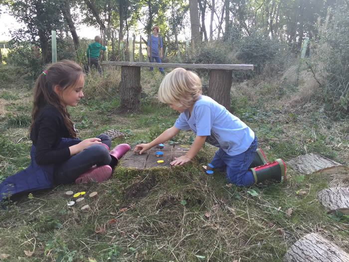 girl and boy playing game on tree stump